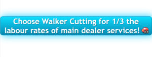 Choose Walker Cutting | Diagnostic