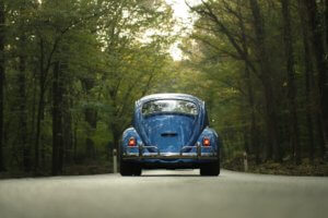 Beetle | Manufacturer Servicing Rotherham