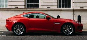 Red Jaguar | Walker Cutting
